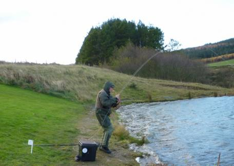 Rob Hall from Morpeth into his second fish during the Fritz 'n' Flies heat at Thrunton